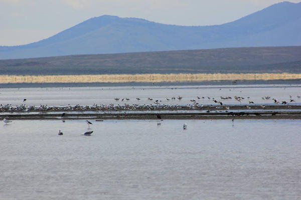 File photo of Malheur Lake within the Malheur National WIldlife Refuge.