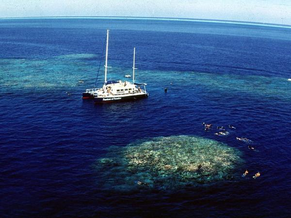 Tourists snorkel around Upolu Cay on the Great Barrier Reef near Cairns off the Australian northeast coast in December 1998.