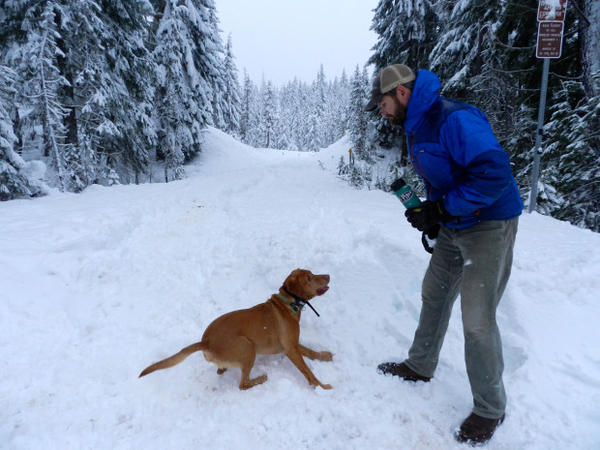 <p>John Stevenson and his dog Apollo at Little Nash Sno-Park in Willamette National Forest.</p>