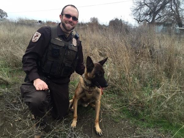 <p>Josh Hindman and Ukkie have worked in the field together for the U.S. Fish and Wildlife Service for about a month. Ukkie is the Service's first enforcement dog in the Pacific Northwest.</p>