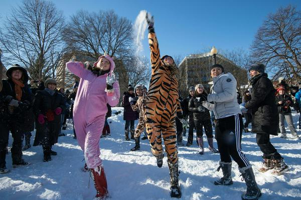 Snowball fights have become a tradition after every major snow storm in Washington, D.C.