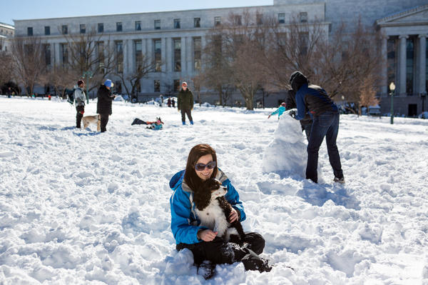 Local resident Mollie Holleman takes in the sights with her dog, Duncan, near the Capitol in Washington.