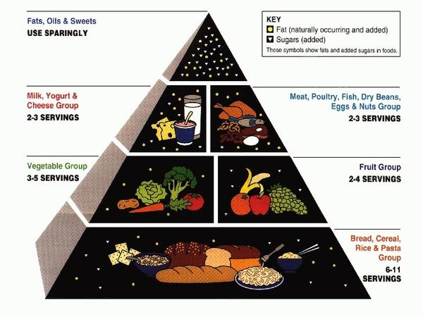 <strong>1992 Food Pyramid: </strong>Carbs were the base of this pyramid, sending the message to eat all you want.