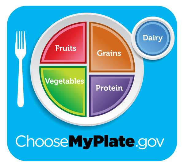 The MyPlate icon is the visual centerpiece of the USDA's advice for healthy eating aimed at the general public.