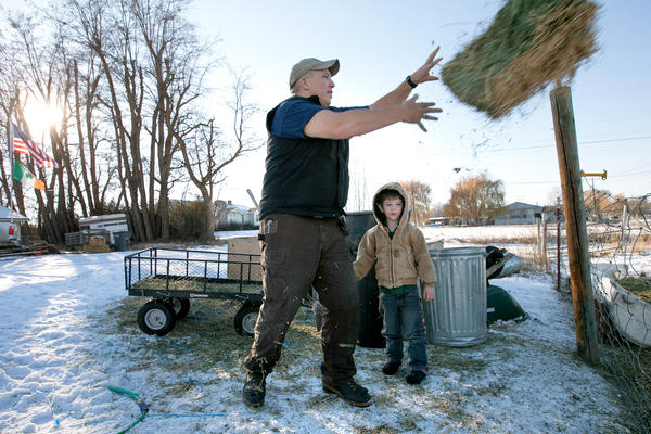 Clay Hull, along with his 4-year-old son William, feeds the cows on his 3-acre farm in Selah, Wash. After Hull was incarcerated for 18 months, the Department of Veterans Affairs sent him a bill for $38,000 in benefits it says he wrongly received.