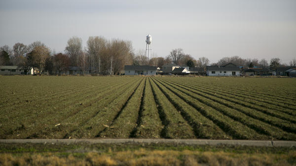 The iconic city water tower can be seen just beyond a farmer's field in Wilder, Idaho.