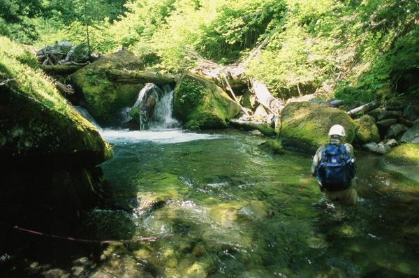<p>A photo from Mike Malone's second expedition into Valhalla. </p>