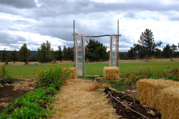 <p>A rustic gate at Rainshadow Organics marks a transition from one field to the next.</p>