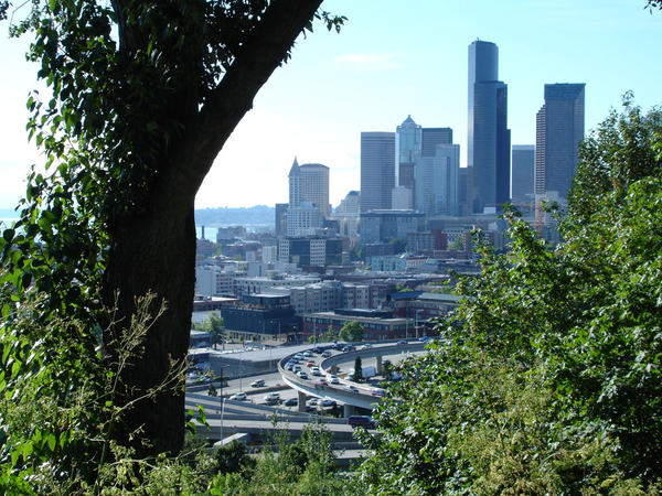 A view of Downtown Seattle from the western slope of Beacon Hill known as 'The Jungle.'