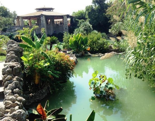 Pagoda and pond