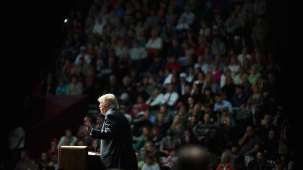 Donald Trump at a campaign rally in Grand Rapids, Mich., in December.
