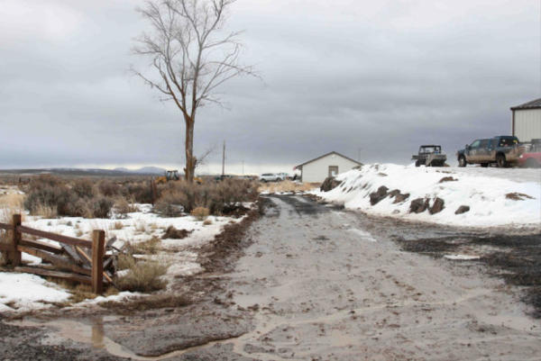 <p>The U.S. Fish and Wildlife Service confirmed that this road within the refuge complex is newconstruction.</p>