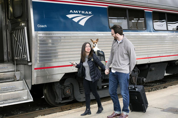 Amtrak spokespeople say Cascades passengers can bring small dogs and cats as long as the pet can sit and stand comfortably and the carrier bottom is leakproof.