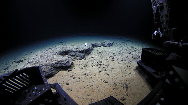 The remotely operated vehicle <em>Deep Discoverer</em> approaches the unknown octopod at 4,290 meters under the ocean's surface.