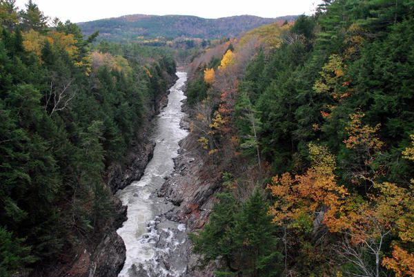 Nine people have committed suicide by jumping off the bridge at the Quechee Gorge in the last eight years, including three in the last year. Now one family is asking lawmakers to prevent similar deaths in the future.