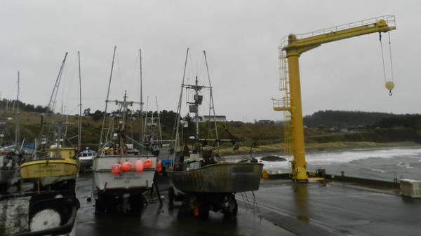 Fishing boats in Port Orford are hoisted out of the water by a pair of giant cranes and stored on a dry dock, as opposed to mooring.