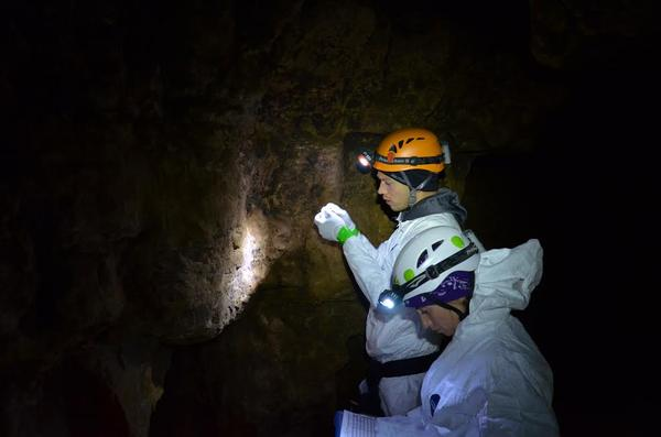 Kate Langwig and Joseph Hoyt collecting samples from a cave in northwest Wisconsin.