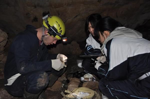 Joseph Hoyt, Tong Liu, and Lin Zhang sampling bats in a cave outside of Changchun, China.