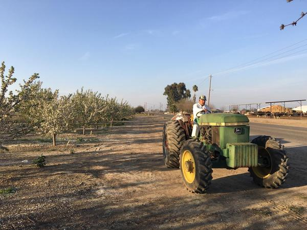 Ben Barra farms 18 acres of Independence almonds southwest of Fresno, Calif. He says this will be his last foray into farming.