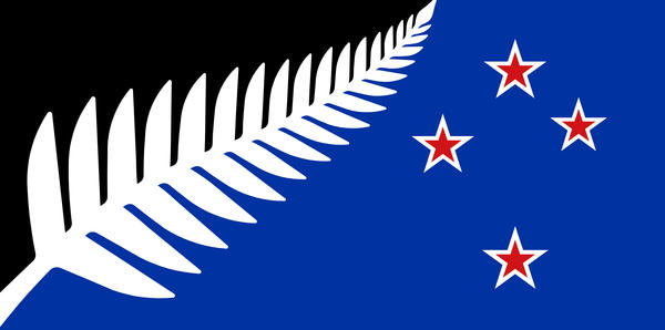 "The final proposed alternative, ""Silver Fern (Black, White and Blue)."""