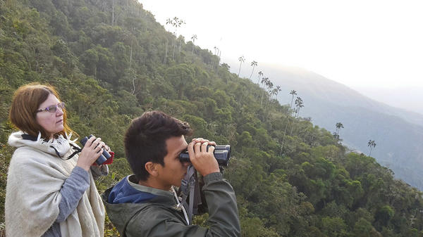 Marcia Wiley (left), a tourist from Seattle, and a guide keep an eye out for birds at a sanctuary in Colombia's Sierra Nevada de Santa Marta range.