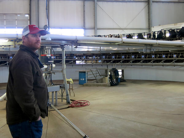 Farmer Casey DeHaan is looking into expanding his herd, in part to meet Leprino's growing thirst for milk in northern Colorado.
