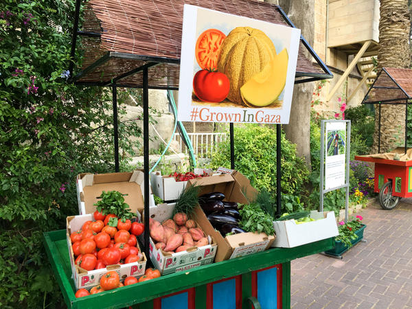 A cart in the garden of the U.S. Consulate in Jerusalem displays produce grown in Gaza: tomatoes, sweet potatoes, eggplant, sweet and hot peppers, green onions and herbs. Like all products leaving Gaza, this shipment needed Israeli approval.