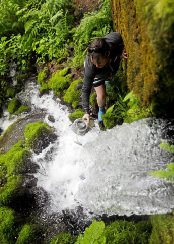 <p>In this Thursday, May 5, 2016 photo, hiker Kris Ramsey collects Little Herman Creek spring water as it pours out of the hillside in Cascade Locks.</p>