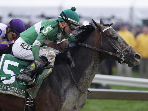 Exaggerator, with Kent Desormeaux aboard, moves past Nyquist during the Preakness Stakes on Saturday in Baltimore.