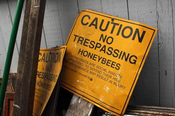 Signs in Ed Lafferty's backyard.