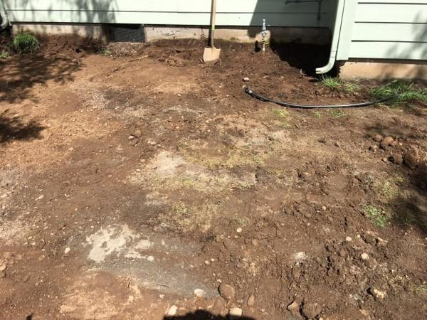 <p>A few inches under the grass, clean-up crews found a layer of gritty, gray soil that was about 12 percent lead.</p>