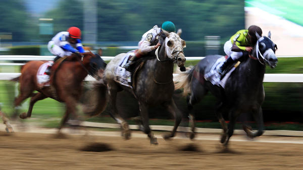 Creator, with jockey Irad Ortiz Jr, and Destin, with jockey Javier Castellano, race to the finish during the 148th running of the Belmont Stakes on Saturday.