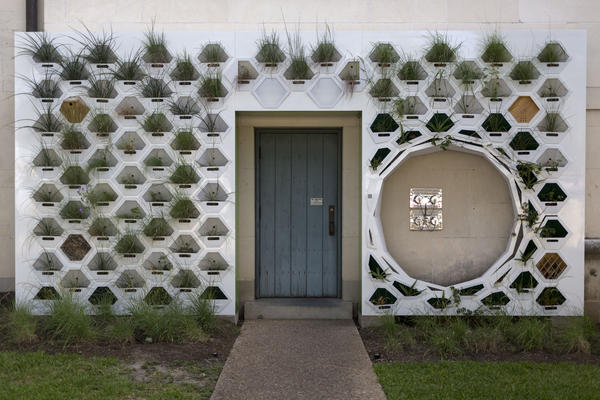 """Living wall"" installations could become more common at the University of Texas, but first the self-sustaining ecosystem embedded in the wall must survive a Central Texas summer."