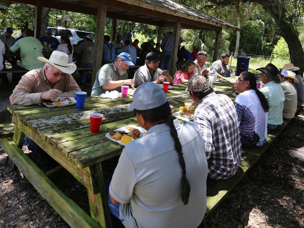 It's traditional for family owners, cowboys, foremen and guests to eat together in a giant potluck provided by the family owners. Popular Seminole foods, besides the beef, are Indian fry bread, pumpkin bread, Spam and tomatoes, and sofki, a corn drink. People gather each day over two weeks, minus weekends, taking turns at both the Big Cypress and Brighton reservations (this is Brighton).