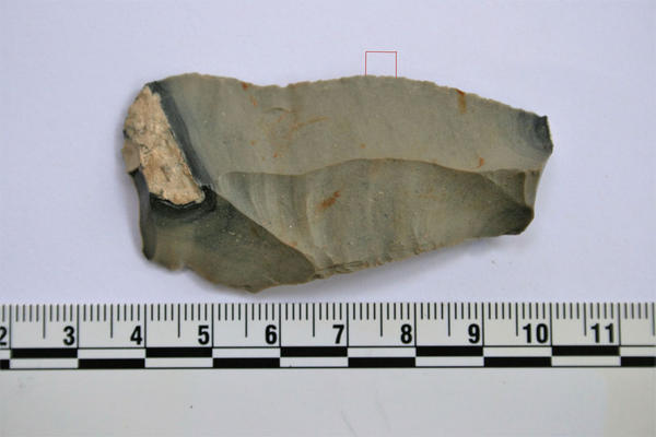 Testing on this Stone Age blade found preserved protein residues confirmed to be from a camel.