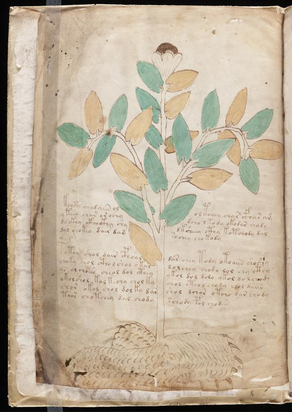 The late-medieval Voynich Manuscript — named after the rare book dealer who unearthed it — is written in a seemingly uncrackable code.