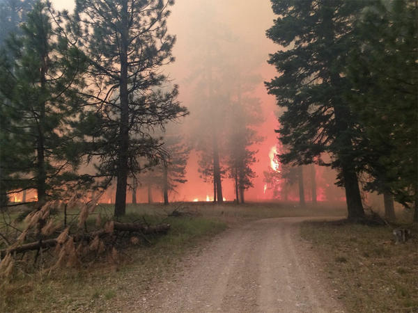 File photo of the the Cornet-Windy Ridge Fire in Northeast Oregon in August 2015.