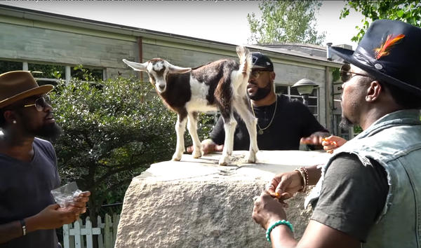 Anthony Hamilton (right) is inspired by a goat.