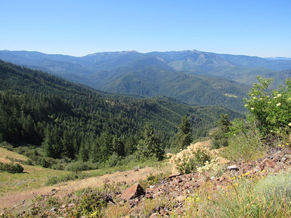 The view from a trail on Bald Mountain in the Applegate.