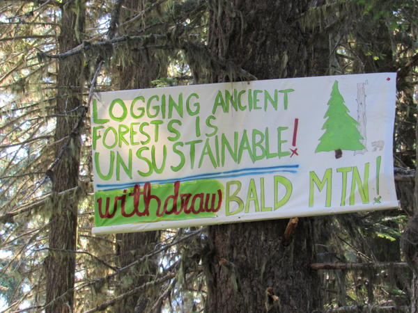 A sign placed high in a tree along the trail protests the proposed Nedsbar project.