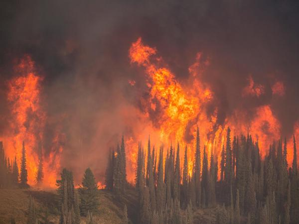 The Pioneer Fire has been burning in Idaho since July, and hot, dry weather caused the fire to grow rapidly this week.