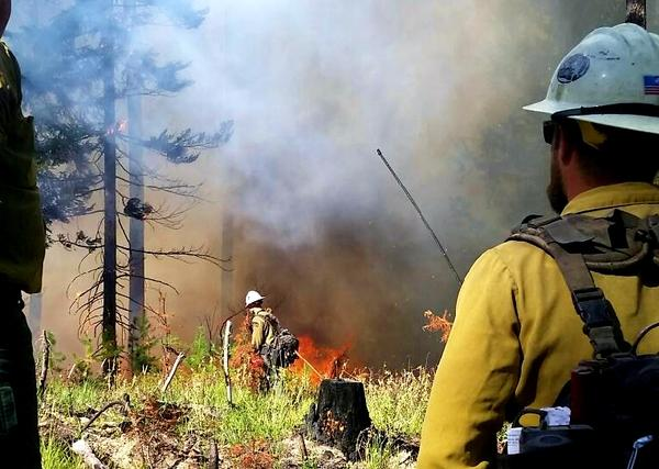 Firefighters from Washington's Department of Natural Resources and the U.S. Forest Service light a fire north of Plain, Washington, on September 9.