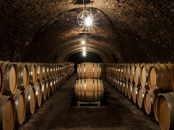 Inside Jacques Selosse's cellars, one of the leading grower Champagnes, where many new producers have apprenticed.