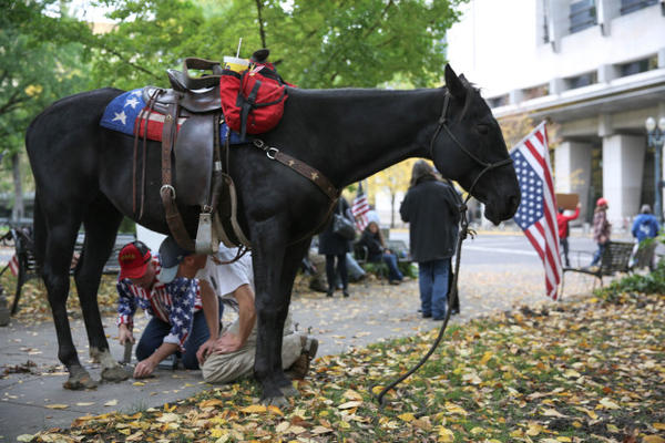<p>Bundy supporters shoe a horse outside the U.S. Federal District Courthouse in downtown Portland.</p>