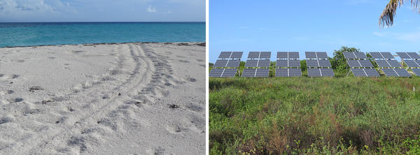 (Left) Loggerhead sea turtle tracks lead to the ocean. This species gives Loggerhead Key its name. (Right) The island has solar power and drinkable water, through a desalination system.