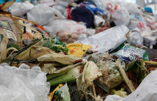 "<p> <span style=""font-size: 12.000000pt; font-family: 'Cambria';"">Despite the availability of curb-side composting in Seattle, food waste is still the top item thrown in the trash. </span></p><p> </p>"