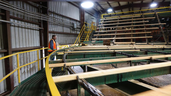 <p>Two Swanson mills in Glendale, Oregon, employ 400 people. CEO Steve Swanson hopes to add another half shift at his lumber mill with an increased timber harvest on federal lands.</p>