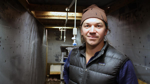 Phil Taylor hopes his startup, Mad Agriculture, can use insects to help cut food waste.