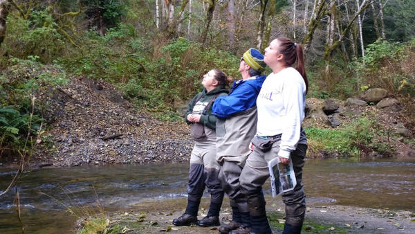 <p>Allison Tarbox (front) and her colleagues at Coos Watershed Association stand mid-stream in the Elliott State Forest.</p>