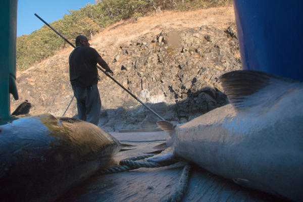 <p>Tribal fishermen at Lyle Falls wear a rope around the waist to catch them in case they fall off the fishing platform.</p>